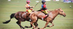 Морь унаач хүүхдийн хамгаалалтын хувцас, морины хэрэгсэлийн стандартад санал авч байна
